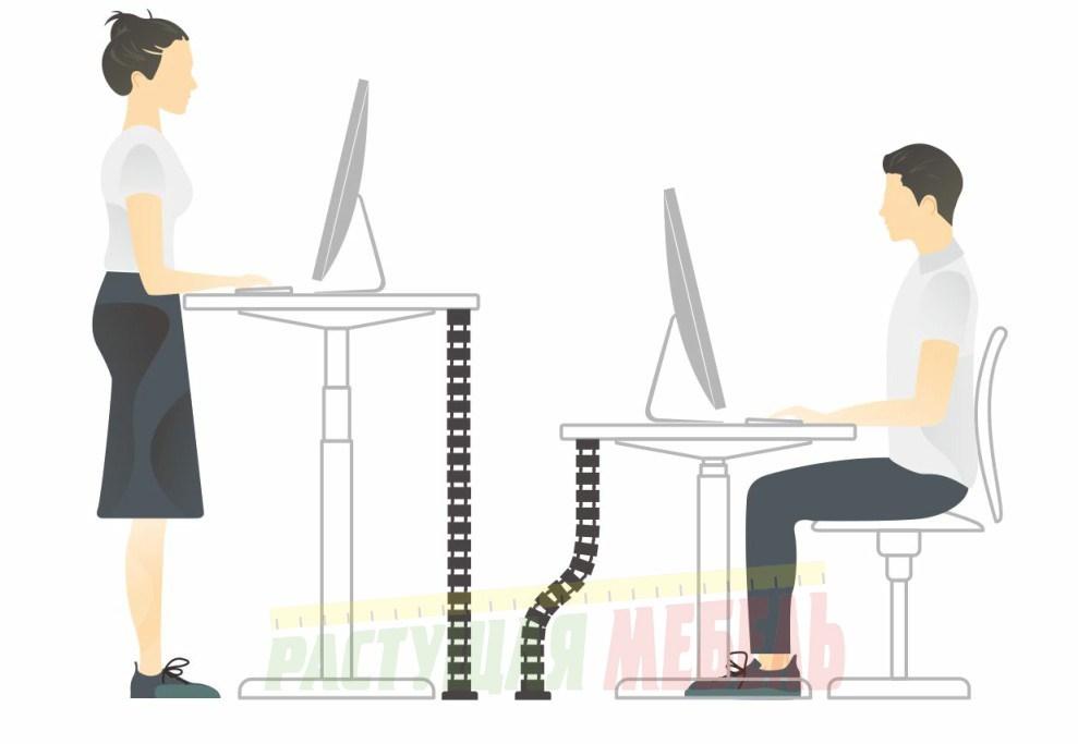 Органайзер проводов Ergo Cabel позволит работать сидя-стоя за электрорегулируемым столом